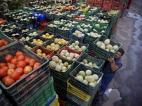 В этом году овощей хватит на всех!